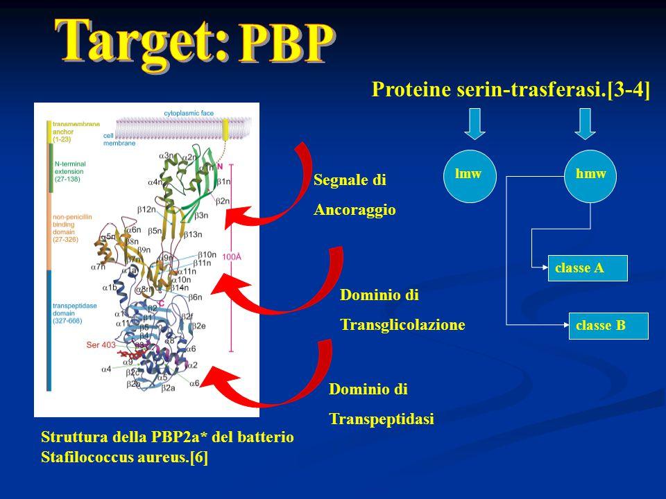 Target: PBP Proteine serin-trasferasi.[3-4] Segnale di Ancoraggio
